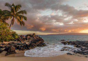 safetravel hawaii hero